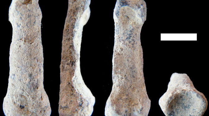 Earliest modern human-like hand bone found in Tanzania